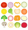 Vegetables Slice Set vector image