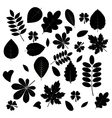 collection leaf silhouettes vector image