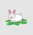 rabbit with carrot isolated on gray background vector image vector image
