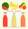 the theme fruits vector image vector image