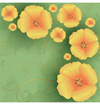 Vintage floral background with flowers poppies vector image vector image