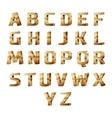 golden 3D alphabet vector image