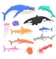 Marine Fauna Set of Aquatic Animals vector image