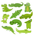 crocodile cartoon crocodilian character of vector image