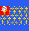 flag of saint-jean-dangely in charente-maritime vector image vector image