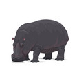 hippopotamus african animal flat icon vector image