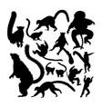 lemur animal silhouettes vector image vector image