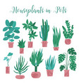 set collection of various houseplants in pots vector image