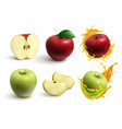 apples realistic set vector image