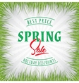 Big Sale spring insignia and labels for any use vector image vector image