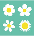 camomile set four white daisy chamomile icon cute vector image