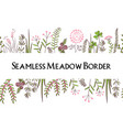 meadow herbs seamless borders background vector image