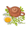 sage tea on white background vector image vector image