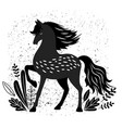 beautiful black horse isolated vector image