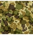 Camouflage background vector image vector image