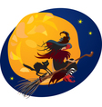 Halloween night - witch and black cat vector image vector image