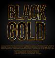 black gold font vector image vector image