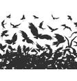flock of birds in black vector image vector image
