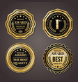 golden badge collection elegant black and golden vector image vector image