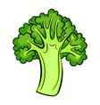 italian broccoli icon cartoon style vector image