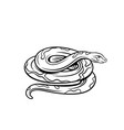 snake outline icon vector image vector image