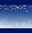 snowflakes 2 vector image vector image