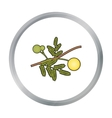 Yellow mimosa flower icon in cartoon style vector image
