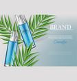 cosmetics spray water moisturizer hydration vector image vector image