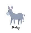 cute foal isolated domestic donkey kid vector image vector image