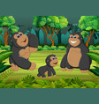 forest background with gorilla family playing vector image vector image