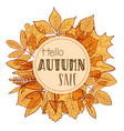 hello autumn background vector image vector image