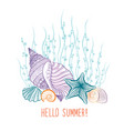 marine life background seashell seastar summer vector image vector image