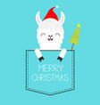 merry christmas alpaca llama sitting in the vector image