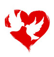 pigeons with heart vector image