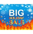 Big winter sale poster with BIG SALE text vector image vector image