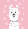 cute lama alpaca face cartoon character vector image vector image