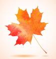 Orange watercolor painted autumn maple leaf vector image vector image