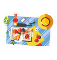 summer picnic food and drink on blanket sunglasses vector image vector image
