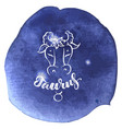 astrology sign on blue watercolor background with vector image vector image