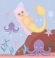 cute siren with octopuses and starfish vector image