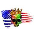 draw skull and flag usa vector image