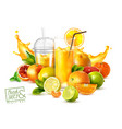 fruit juice realistic poster vector image vector image