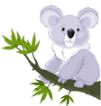 Koala on a Tree vector image vector image