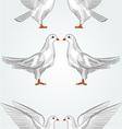 Seamless texture white dove