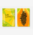 set summer palm exotic badge isolated typographic vector image vector image