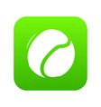 tennis ball icon green vector image