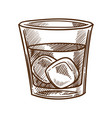 whiskey cola and ice cubes in glass isolated vector image vector image