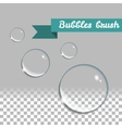 Transparent bubbles brush Isolated design vector image