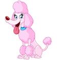 poodle dog vector image