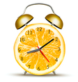 Alarm clock made of an orange Concept of diet vector image vector image